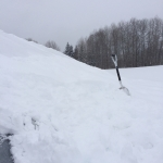 High tunnel with snow shovel