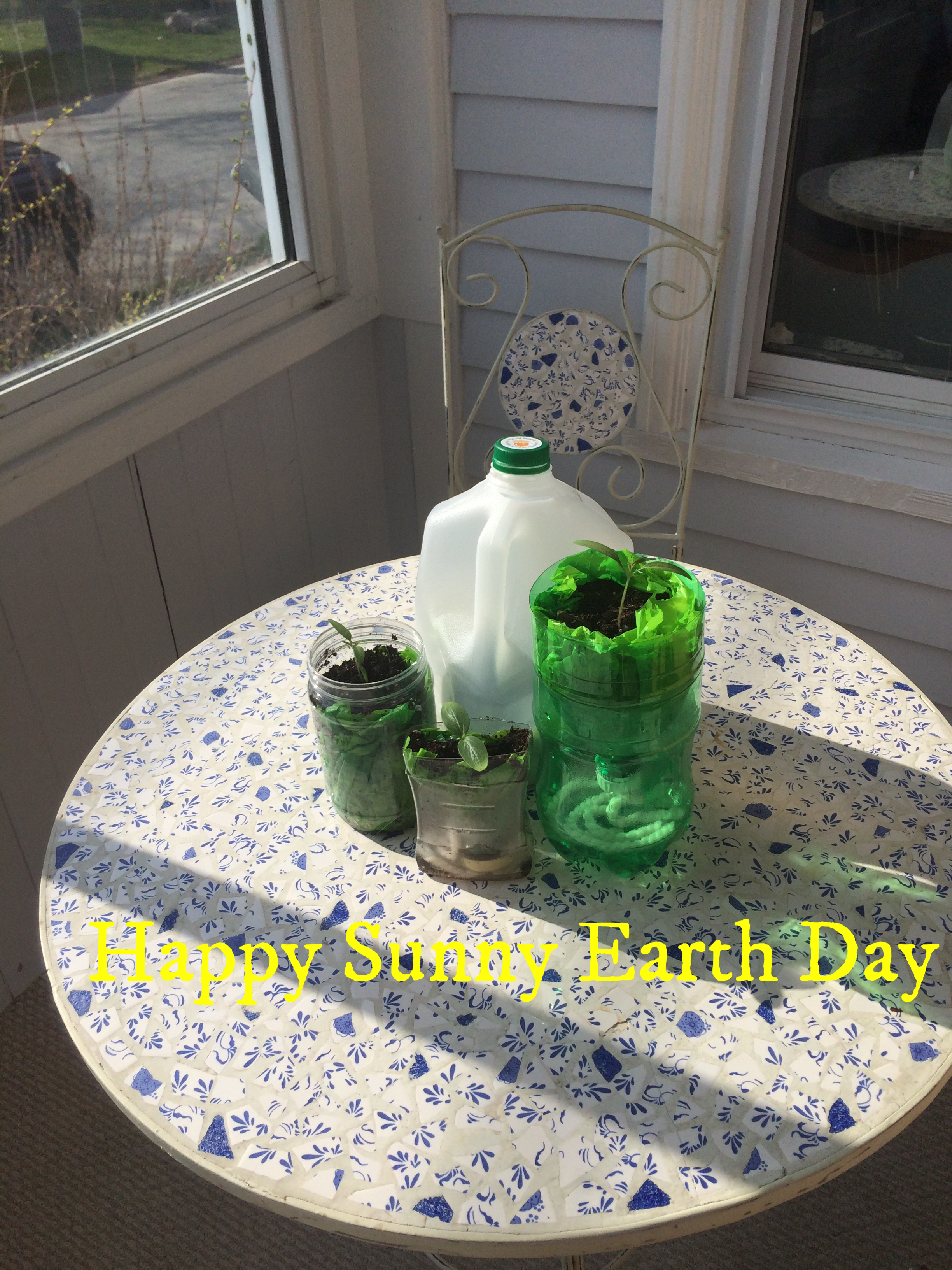 Celebrating Earth Day with DIY Upcycled Seedling Planters